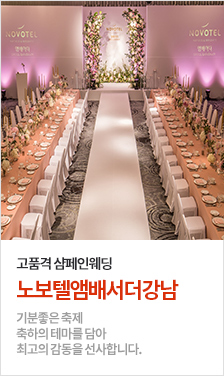 NOVOTEL AMBASSDOR SEOUL GANGNAM(노보텔 앰배서더 서울 강남)